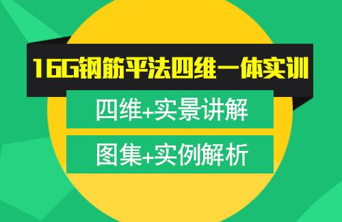 蒋龙16G钢筋平法三维实训