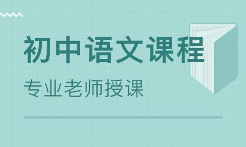 初中语文豪华辅导课程