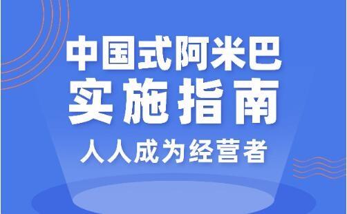 胡八一中国式阿米巴实施指南