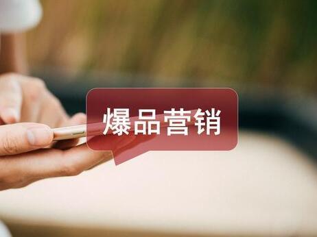 爆品营销:刘春雷爆品营销的秘密